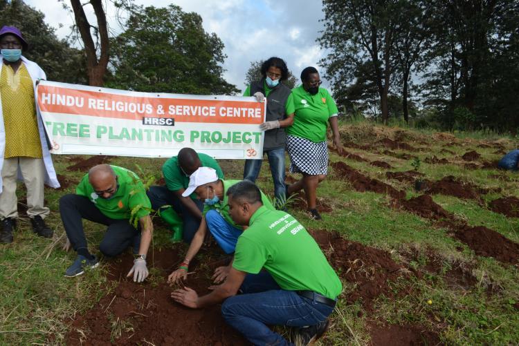 Kanyariri tree planting 2021